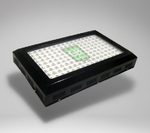 Kind K5 XL1000 LED Grow Light Review