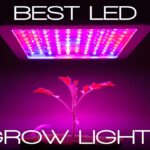 15 Best Led Grow Lights (For Cannabis) Reviews 2020