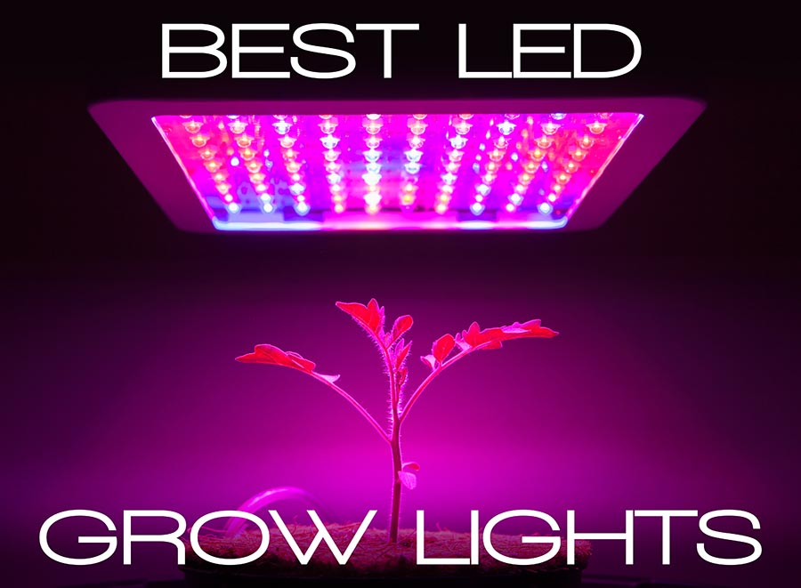 15 Best Led Grow Lights (Cannabis) Reviews For 2019