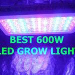 Best 600 Watt LED Grow Lights Product Reviews 2019
