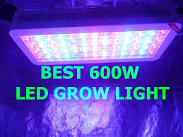 Best 600 Watt LED Grow Lights Product Reviews 2019