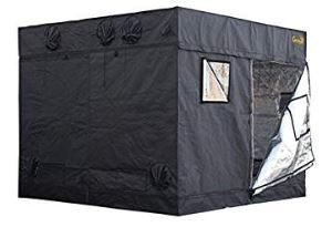 Best 8×8 Grow Tent Reviews For 2019